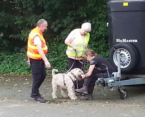 Terrier Mantrailling